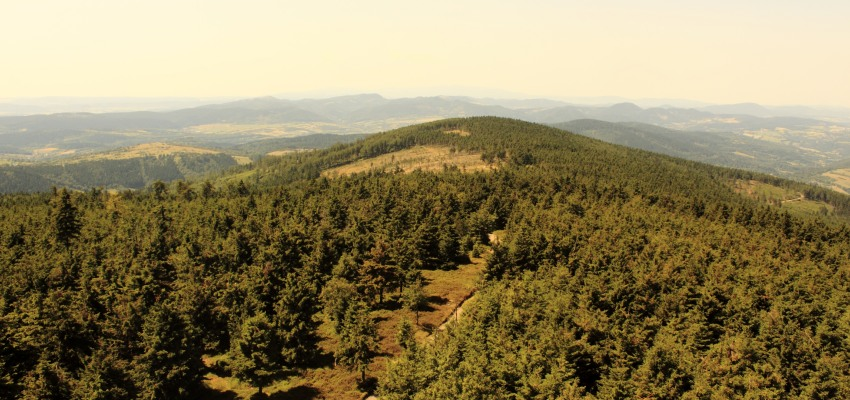 Góry Sowie - co warto zwiedzać