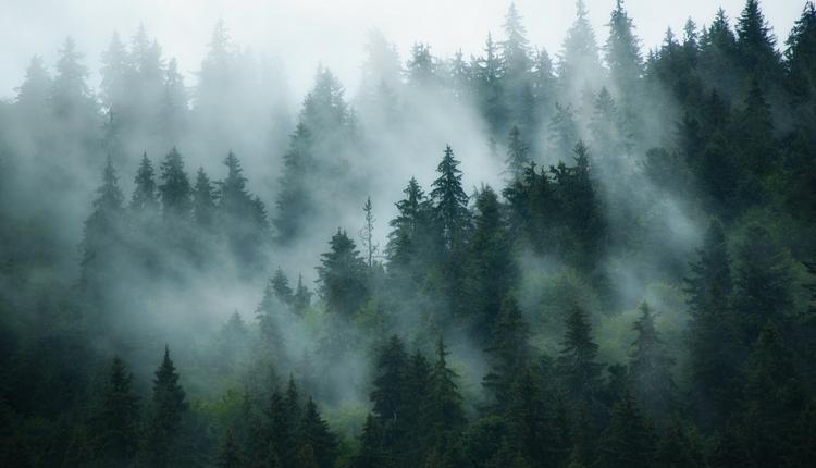 Góry Sowie - sprawdź mapę i atrakcje