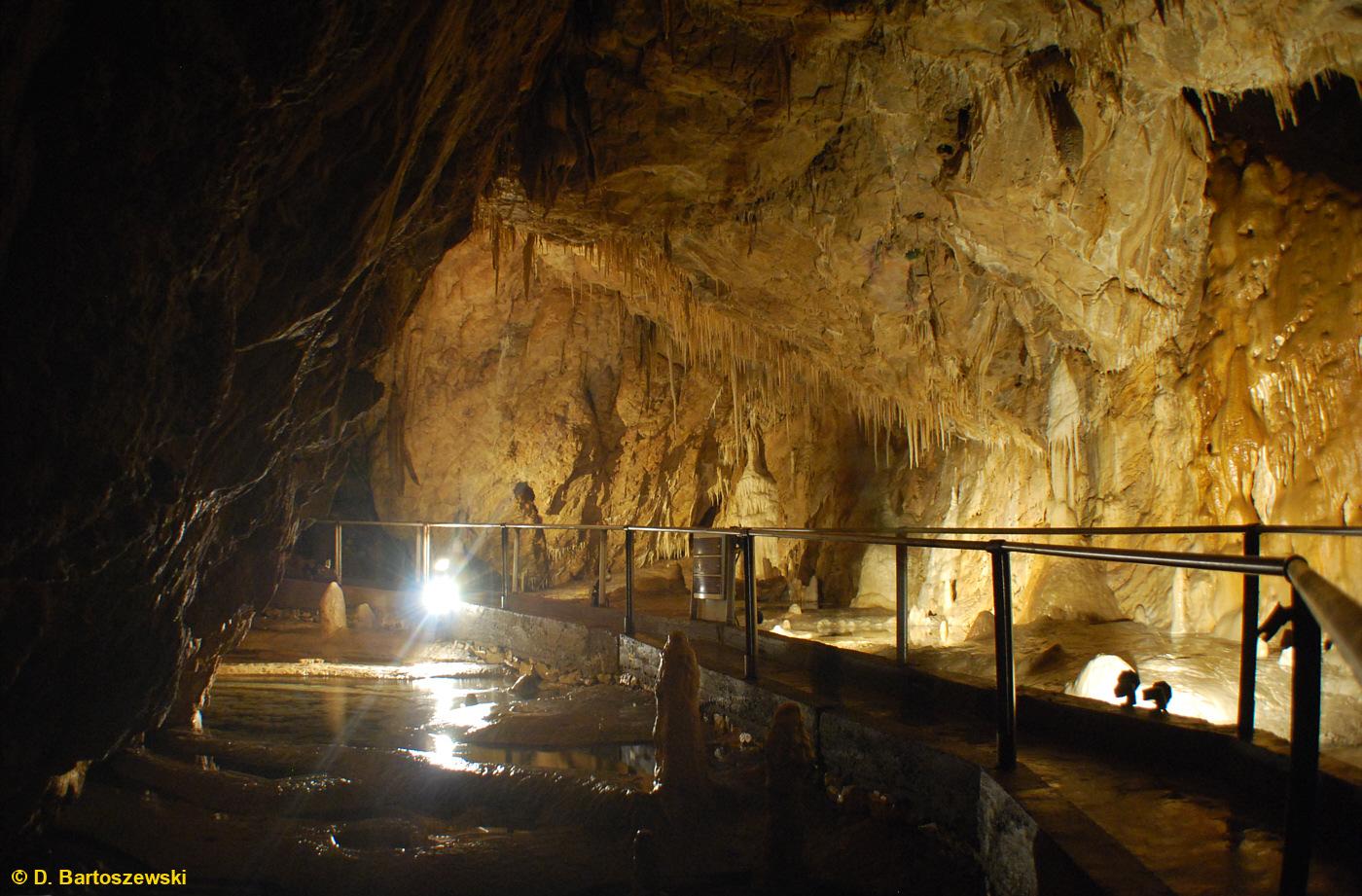 Kletno Jaskinia Niedźwiedzia