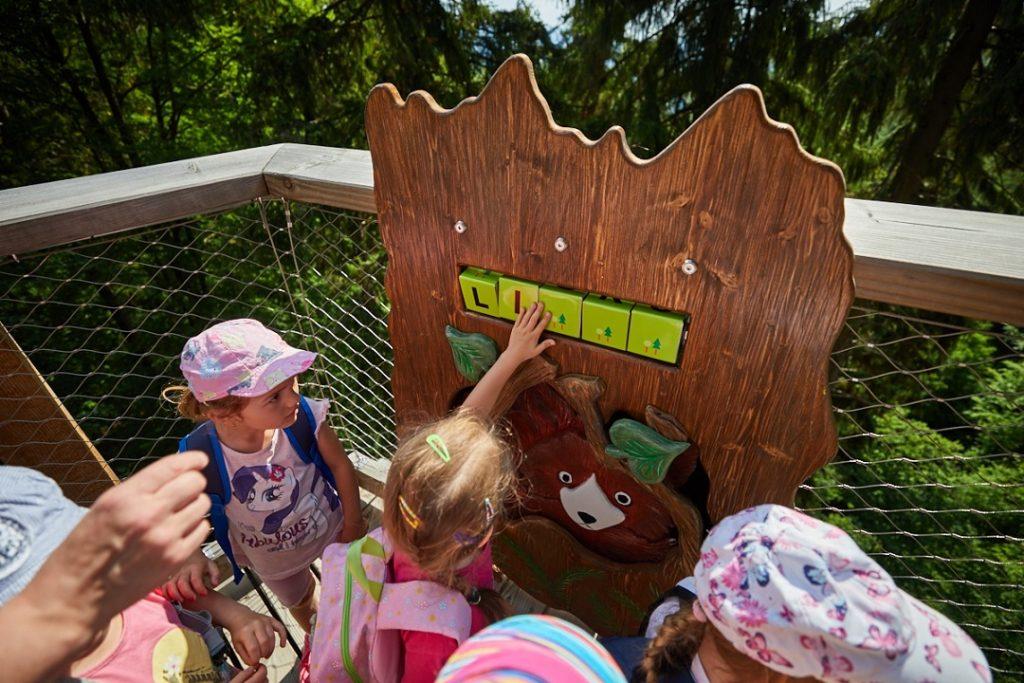 Atrakcje dla dzieci - Karkonoska ścieżka w koronach drzew