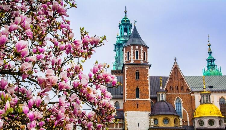 Majówka w Krakowie - odkrywaj miasto